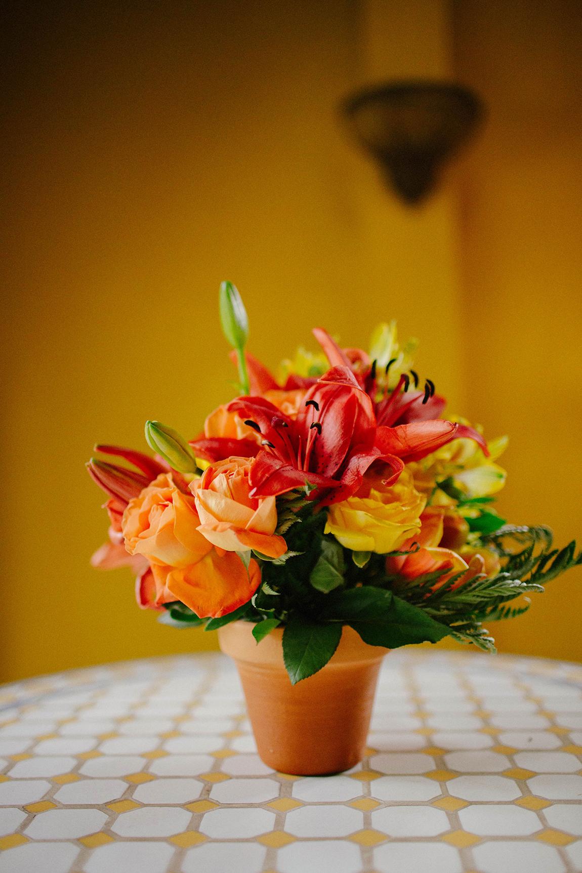 mariana-alves-fotografia-curitiba-flores (114)