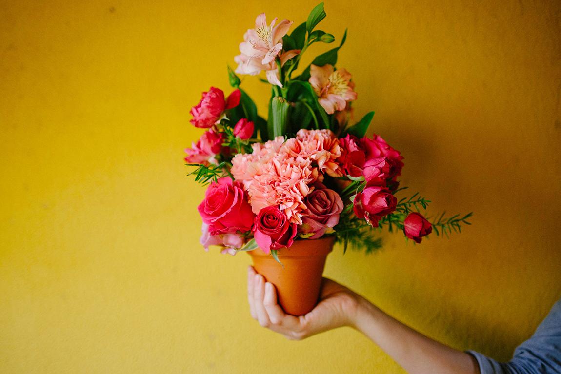 mariana-alves-fotografia-curitiba-flores (84)