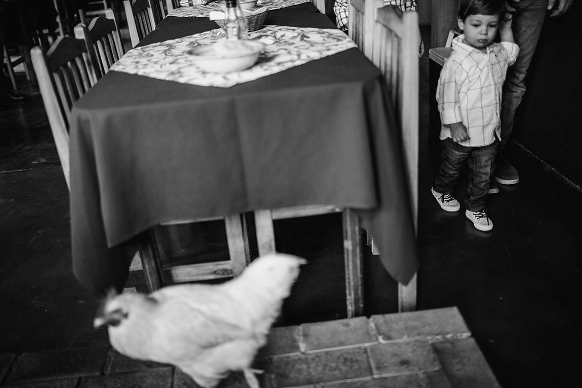 mariana-alves-fotografia-casamento-civil-curitiba-restaurante-pasargada-fabi-andre (184)