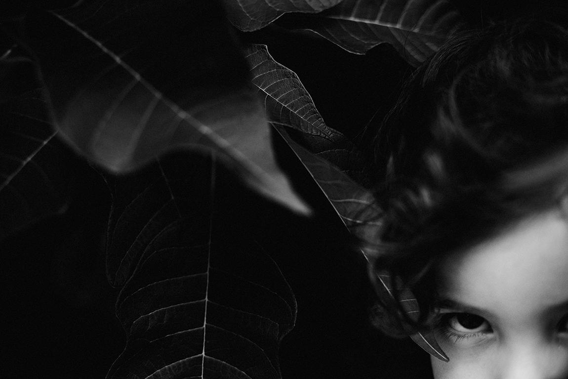 mariana-alves-fotografia-arvore-folhas (90)