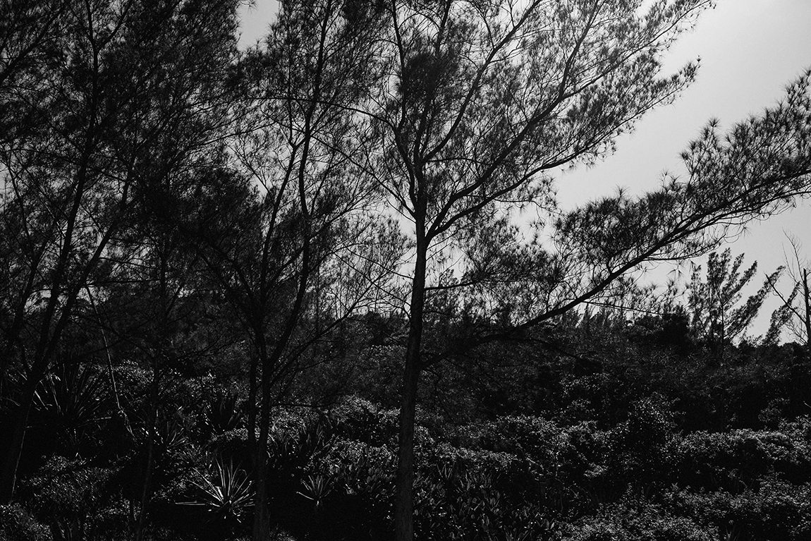 mariana-alves-fotografia-viagem-garopaba (56)